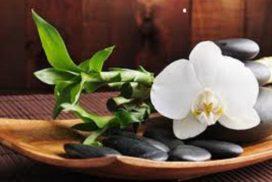 SPIRITUAL CLEANSINGS